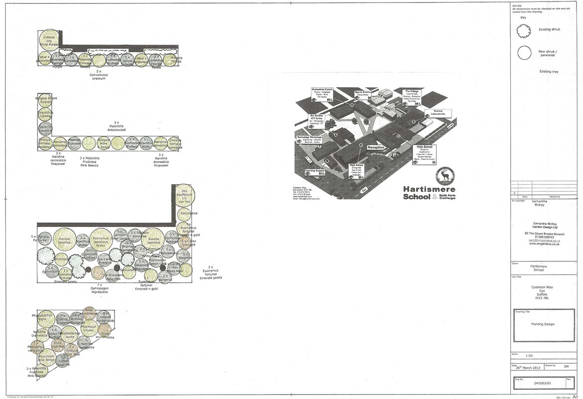Design plan for a commercial garden, Eye, Suffolk