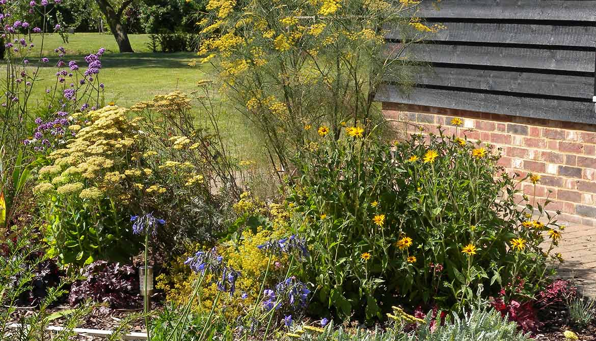 Large exposed garden in diss norfolk samantha mckay for Garden design norfolk